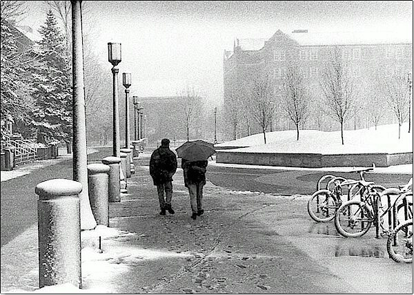 Campus in Blizzard