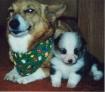 Toby & her ba...