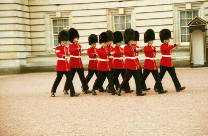 The Palace Guards