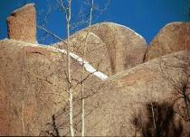 Shape - Round Rocks