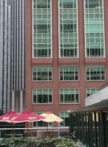 Buildings and Umbrellas