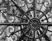 Lines in Wrought Iron BW