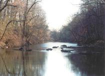 Stony Brook Reflections #1