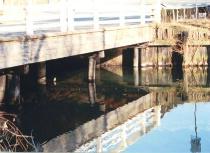 Stony Brook Reflections #2