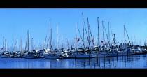 Yacht Club St. Petersburg, FL