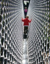 Net Walking