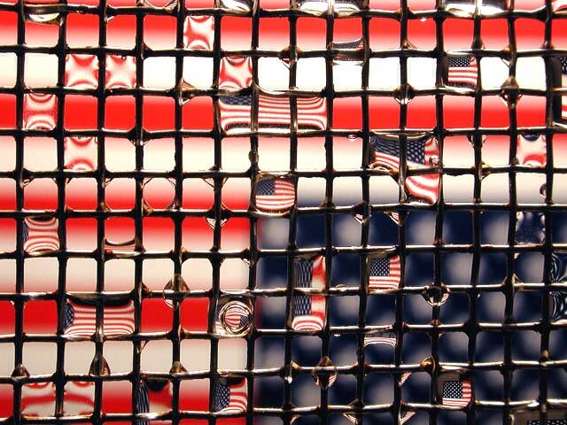 Patriotic Reflections