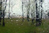 Still Storming