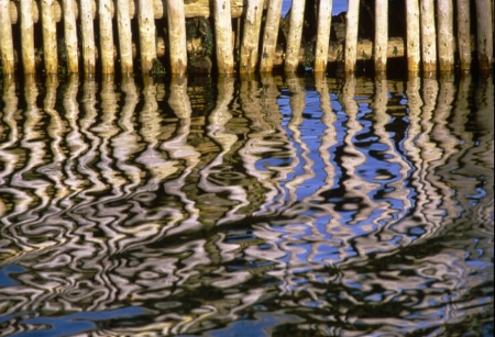 pilings and reflection