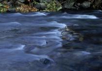 <b>River Motion 1 (No filter)</b>