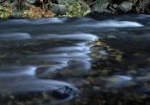 <b>River Motion 2 (Polarizer used)</b>