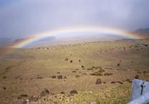 Rainbow over Beasts