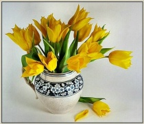 Yellow Tulips in Crackleware Pitcher