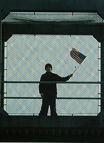Flagwaver