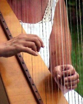 Gentle Are The Hands Of A HArp