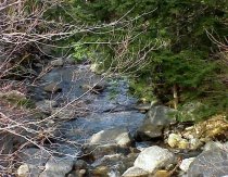 New Hampshire Streams