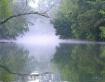 Lazy River Reflec...