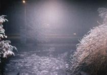 Beginings of Frost