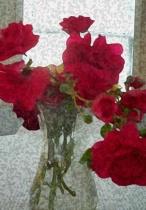 Yesterday's Flowers