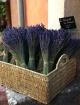 Basket of Lavende...