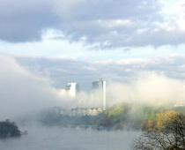 Fall fog III