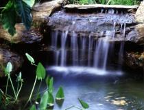 Whirlpool Waterfall