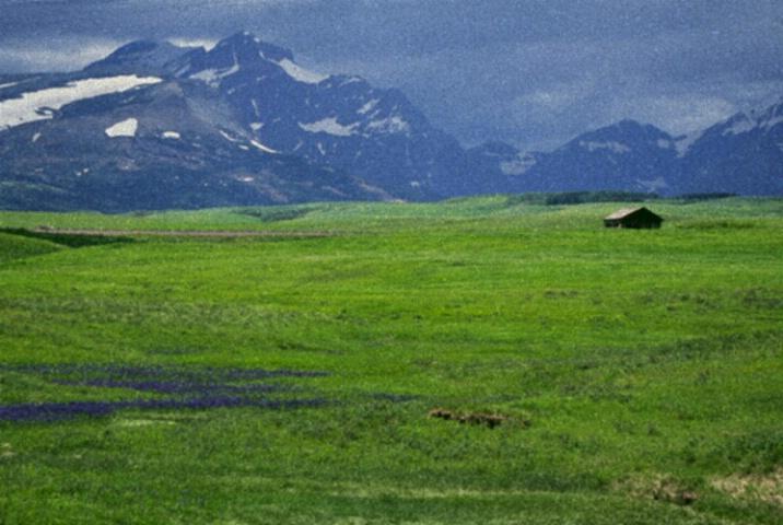 Lone Shack, East Glacier, Montana