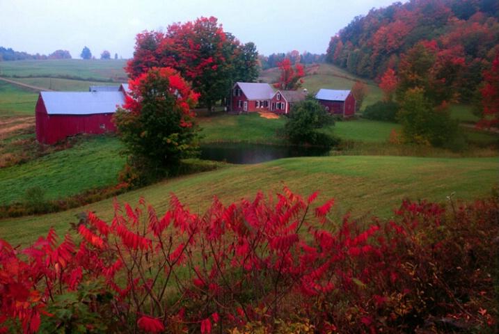 Jenny Farm, Woodstock, Vt.