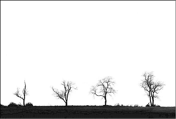 Tree family