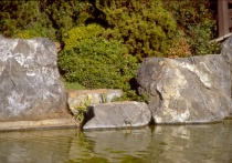 Framed by Rocks