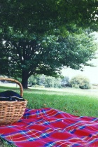 Picnic Blanket & Basket in the Park