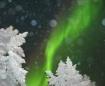 Northern Lights!