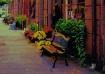 Sidewalk colors