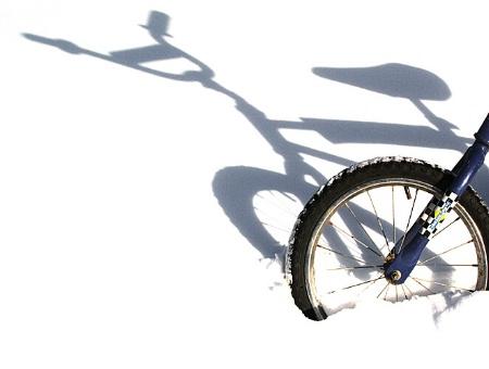 Nature's Bike Stand