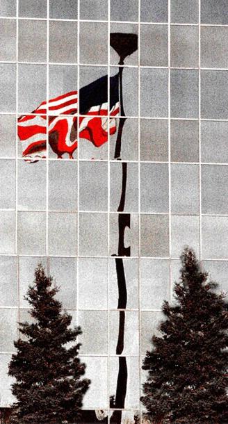 Freedom Reflection