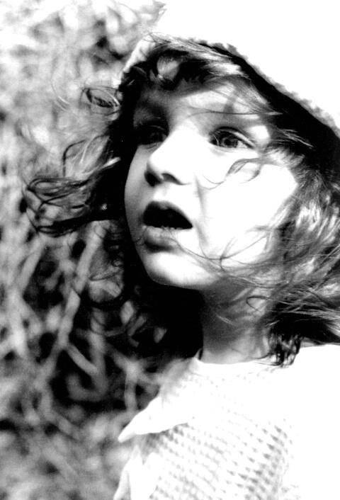 Spring Breeze -- The Child's Pleasure