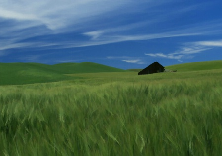 Lone Shack in the Palouse