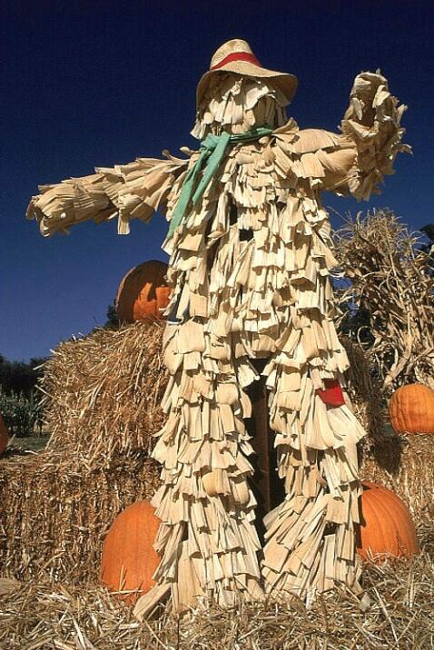 Straw Scarecrow 2b
