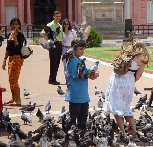 Pigeons and children
