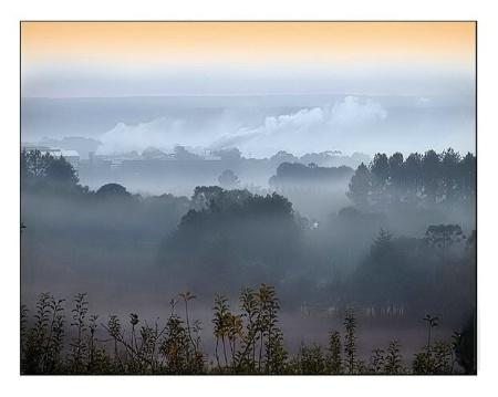Fog`s Valley