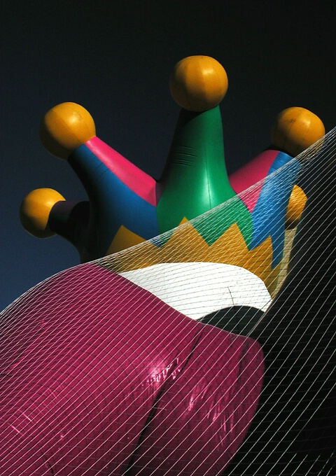Crown and Netting