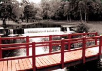 The Red Bridge #254