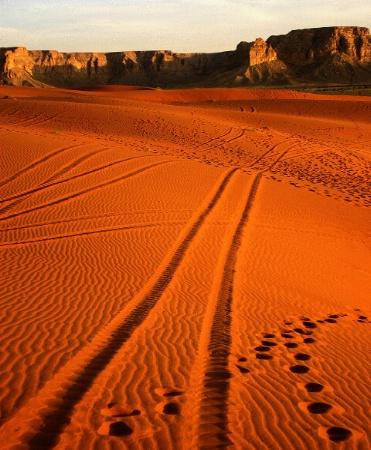Tracks Through Red Sand