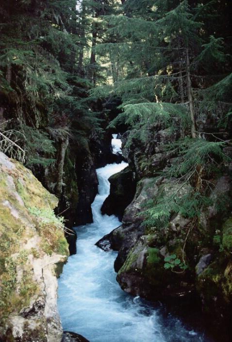 Waterfalls, Glacier NP - ID: 340060 © Lamont G. Weide