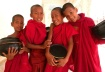 Buddha's Boys