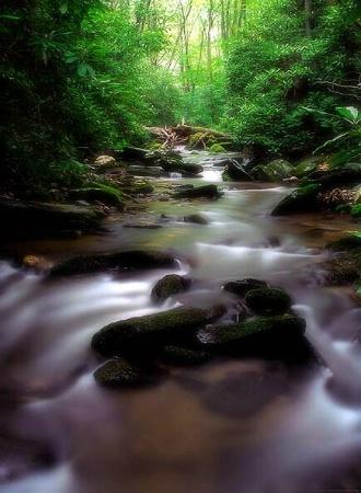 Where the Streams Run Cold