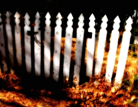 Ghost Fence