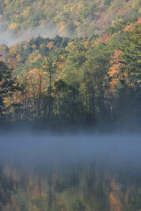 Mist And Partial Reflection - ID: 582002 © Jim Miotke