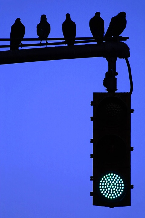 Manhattan Stoplight