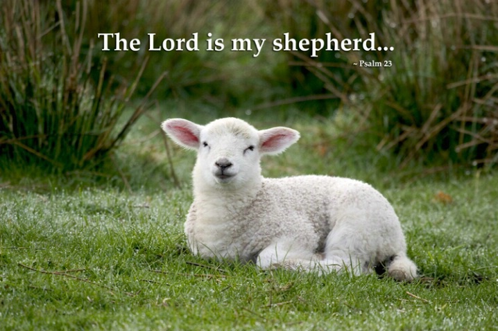 The Lord is My Shepherd - ID: 654112 © Jim Miotke